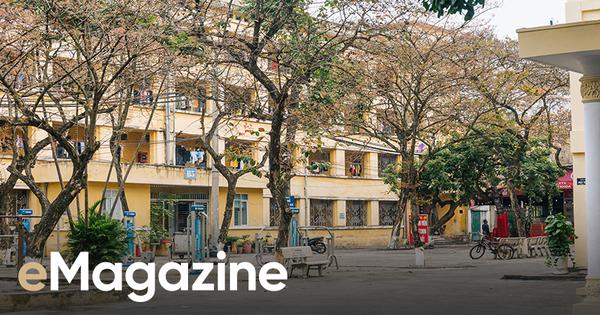 Kỳ nghỉ Tết dài nhất lịch sử của ngành Giáo dục Việt Nam