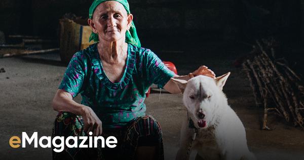 Cuộc đoàn tụ của cụ bà và con chó Cưng ở Hà Giang: 'Chó về rồi, bà không khóc nữa'
