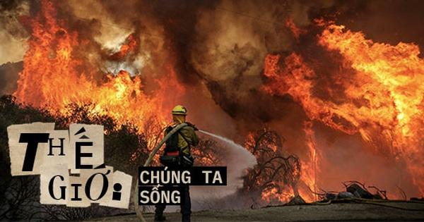 Vì sao cháy rừng ngày càng cuồng bạo? Là vì một quả bom nổ chậm nhân loại vô tình tạo ra sau hàng thập kỷ chống lại 'giặc lửa'