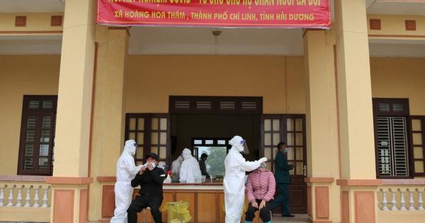 Hải Dương: Xét nghiệm để ''giải cứu'' 1,2 triệu con gà đồi ở tâm dịch Chí Linh
