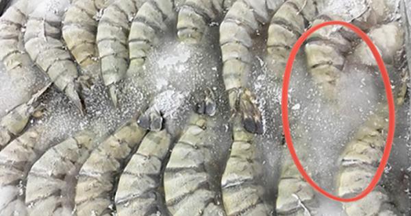 Hải sản trong siêu thị bị lớp đá dày bám quanh liệu có phải để 'ăn gian' cân nặng? Sự thật lại rất đáng ngờ!