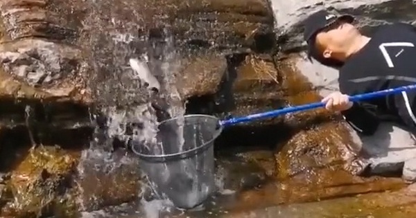 Cư dân mạng bất ngờ tìm ra người 'không làm mà vẫn có ăn', nằm ngủ mà vẫn bắt được cả rổ cá