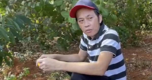 Sau nhà thờ tổ 'trăm tỷ', NS Hoài Linh hé lộ cơ ngơi là khu vườn trái cây đủ loại của ngon vật lạ siêu to ở Đồng Nai
