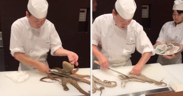 Đầu bếp Nhật múa dao 'phanh thây' con bạch tuộc sống chỉ trong chớp mắt, dân mạng xem clip qua điện thoại cũng thấy sợ hãi