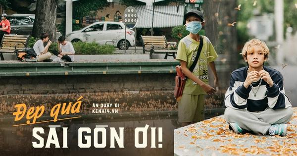 Sài Gòn mùa hoa dầu bay 'thống trị' khắp phố: Giới trẻ check-in đẹp thổn thức, nhưng cô chú lao công chắc 'cực lắm à nghen'!