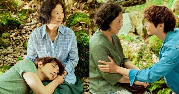 Phim Hàn về mối tình 'bà cháu' gây tranh cãi dữ dội: 'Dù là phim thôi nhưng vẫn sai quá sai!'