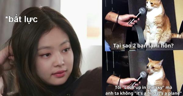 Giải mã bộ ảnh nghìn share 'vì sao Gen Z ly hôn': Quả thật khoảng cách xa nhất là từ fan Kpop đến non-fan Kpop, Gen Y cũng 'bó tay'