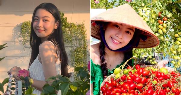 Chùm ảnh: Lọ Lem nhà MC Quyền Linh xinh quá, đứng giữa biệt thự 21 tỷ ngập hoa trái lại càng xinh