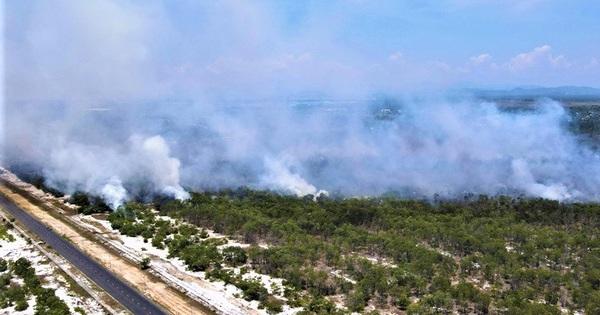 Rừng phòng hộ ven biển bốc cháy dữ dội, hàng trăm người nỗ lực dập lửa