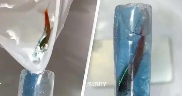 Tiệm nail bị chỉ trích vì nhét cá còn sống vào móng tay của khách, hứa sẽ bảo hành nếu... cá chết