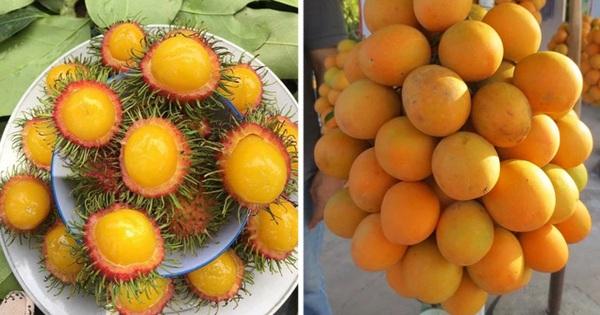 Việt Nam có những loại quả rất 'lừa tình': Nhìn thì tưởng sẽ rất ngọt nhưng ăn thử mới biết 'thế nào là lễ hội'