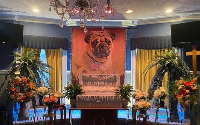 """Đám tang long trọng của cún cưng """"con nhà giàu"""""""