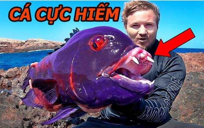"""Thợ câu bắt được con cá """"quái vật"""" mắt đỏ ngầu như máu và răng như ma cà rồng"""