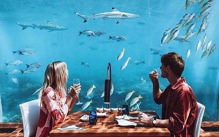 Loá mắt với khách sạn triệu đô dưới đáy biển Ấn Độ Dương mà chỉ giới siêu ...
