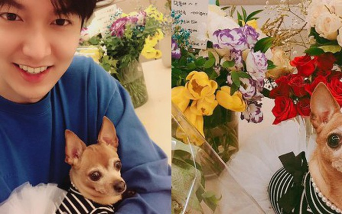 Dù có là chàng trai vạn người mê như Lee Min Ho thì về nhà cũng phải ...