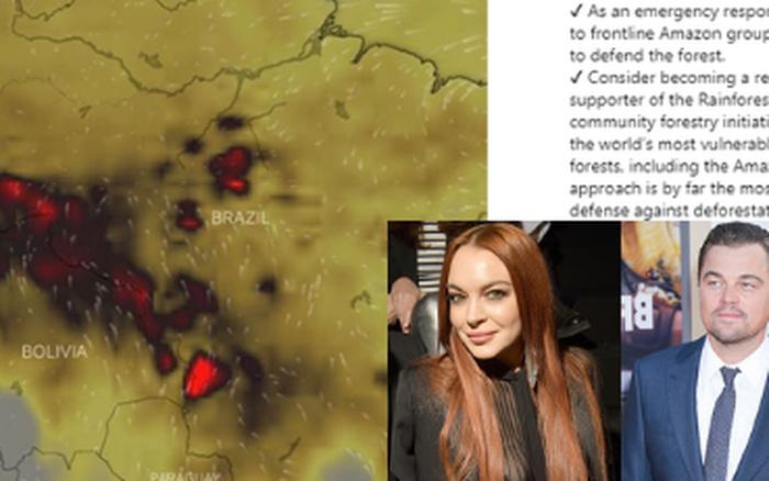 Kêu gọi sự quan tâm về cháy rừng Amazon nhưng bị Lindsay Lohan hỏi khó, Leonardo ...