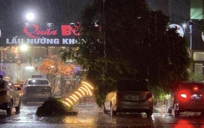 Ảnh hưởng bão số 3: Loạt cây xanh bật gốc, đường ngập ở Móng Cái