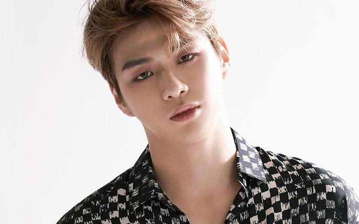 Kang Daniel cuối cùng cũng được minh oan: Không có chuyện gian lận doanh số album như lời ...
