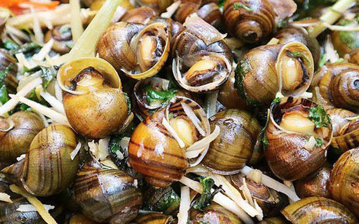 Ăn ốc nhồi vào mùa thu đông không chỉ ngon mà còn chữa được vô số bệnh ...