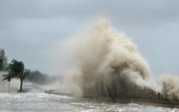 Chuyên gia nhận định bão số 9