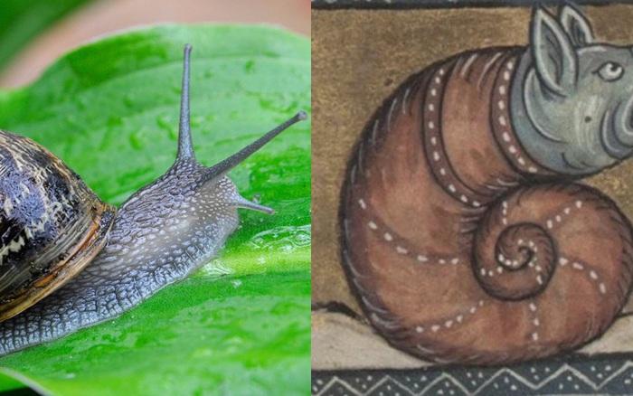 Khi họa sĩ thời Trung Cổ trổ tài vẽ lại động vật qua lời kể, con nào cũng sai trái hết hồn luôn
