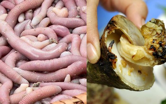 Những món hải sản ở Việt Nam tưởng quen thuộc lại được sách kỷ lục vinh danh, ...