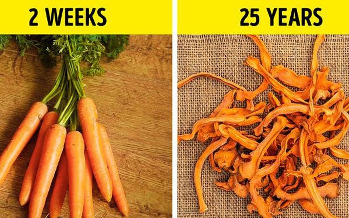 Bạn có thể giữ đồ ăn cả chục năm thay vì chỉ vài ngày theo ...