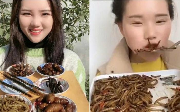 """Khiếp sợ trước trào lưu ăn côn trùng cực ghê rợn của nhiều YouTuber Mukbang Trung Quốc: Có thực sự """"bổ dưỡng"""" như lời đồn?"""