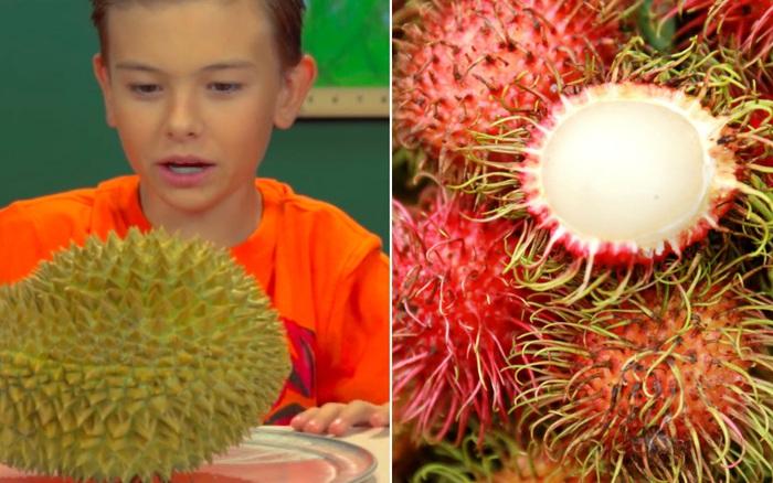 """Những loại trái cây rất phổ biến ở Việt Nam nhưng lại là """"nỗi ám ảnh"""" trong mắt người nước ngoài vì hình thù kỳ dị"""