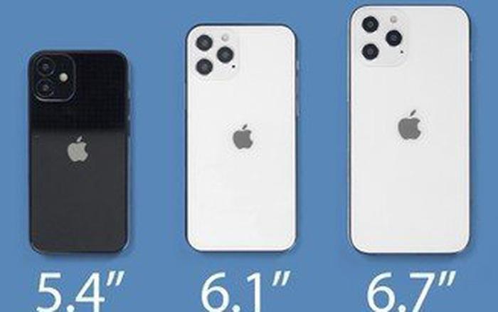 Tranh cãi về việc iPhone 12 nào sẽ bán ra đầu tiên