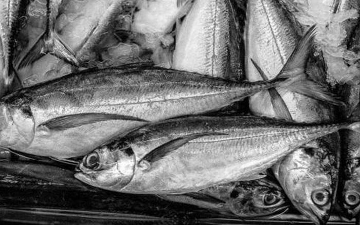 Ăn thịt cá tốt cho sức khỏe nhưng có 2 loại cá là