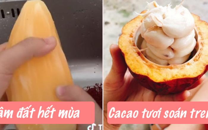 """Sau khoai sâm đất, dân TikTok tiếp tục lăng xê món mới """"sinh tố cacao"""": Người bán khẳng định ăn ngon hơn sinh tố mãng cầu gấp nhiều lần?"""