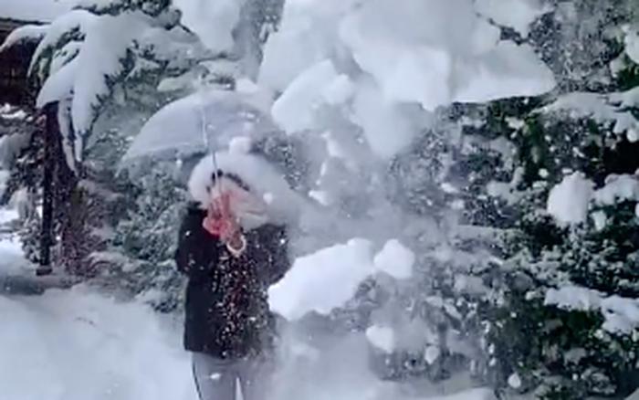 Màn sống ảo chứng minh tuyết không phải lúc nào cũng thơ mộng như bạn vẫn nghĩ, nhiều người còn thấy nguy hiểm hơn là đẹp