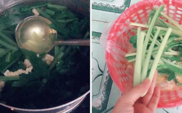 Giao cho em trai nhiệm vụ nấu canh cải, cô gái tá hoả khi phát hiện hơn một nửa số rau đã nằm trong… sọt rác!