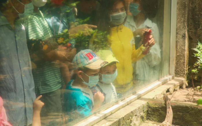 Hàng ngàn người đổ về Thảo Cầm Viên dịp lễ 30/4: Trẻ em, người lớn đều đeo khẩu trang phòng dịch Covid-19