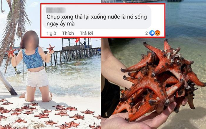 Phản ứng hời hợt của dân mạng về việc sống ảo với sao biển: