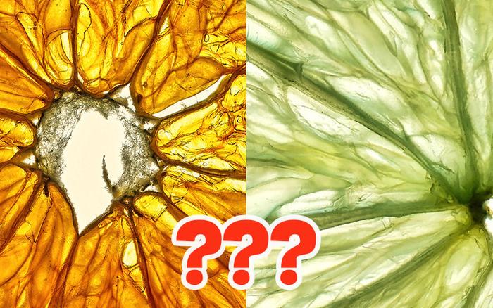 Đố bạn nhận ra những hình ảnh mỹ miều này thuộc về loại trái cây nào? Vậy mới thấy tự nhiên quá đỗi kỳ diệu!