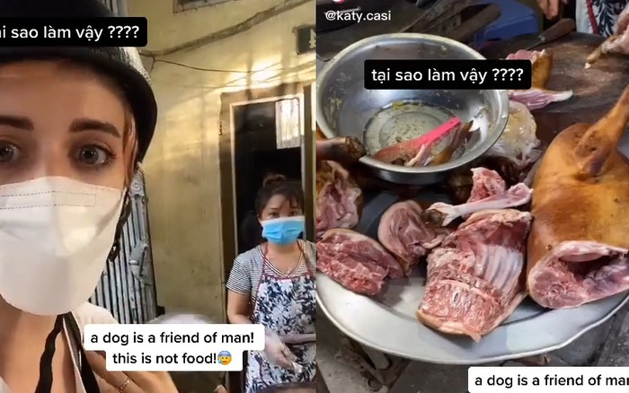 Lên án chuyện ăn thịt chó ở Việt Nam, cô gái nước ngoài cho biết bị dân mạng công kích đến mức phải bỏ về nước? - mega 645