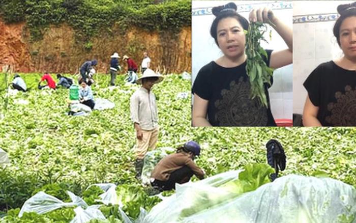 Nông dân tặng Sài Gòn cả vườn rau, sao doanh nghiệp lớn sá gì không chịu hi sinh vài đồng lợi nhuận: Một