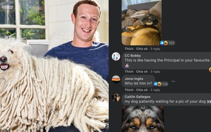 Dù là CEO Facebook, Mark Zuckerbreg cũng bị doạ kick ra khỏi một group vì vi phạm quy tắc