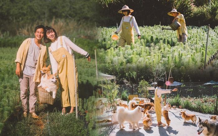 Từ giấc mơ Đà Lạt của cặp đôi 9x đến khu vườn cún nằm bên bờ suối mộng mơ
